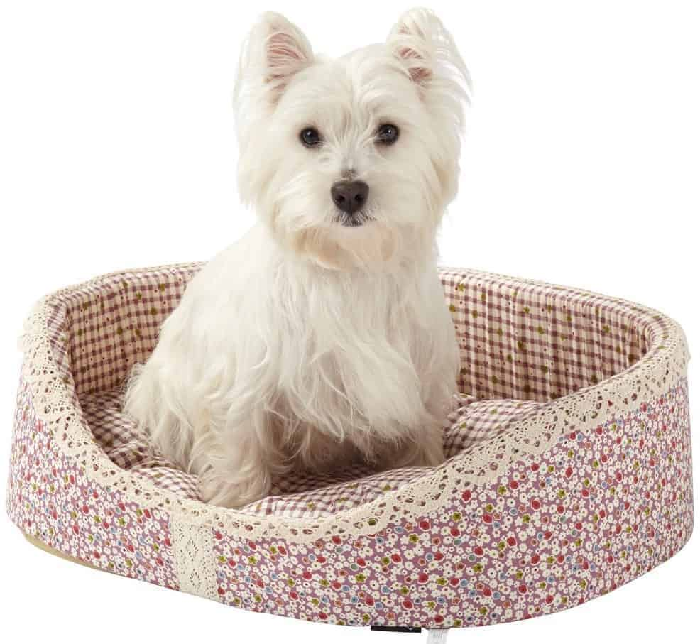 Best Floral Dog Bed – Bunty Blossom