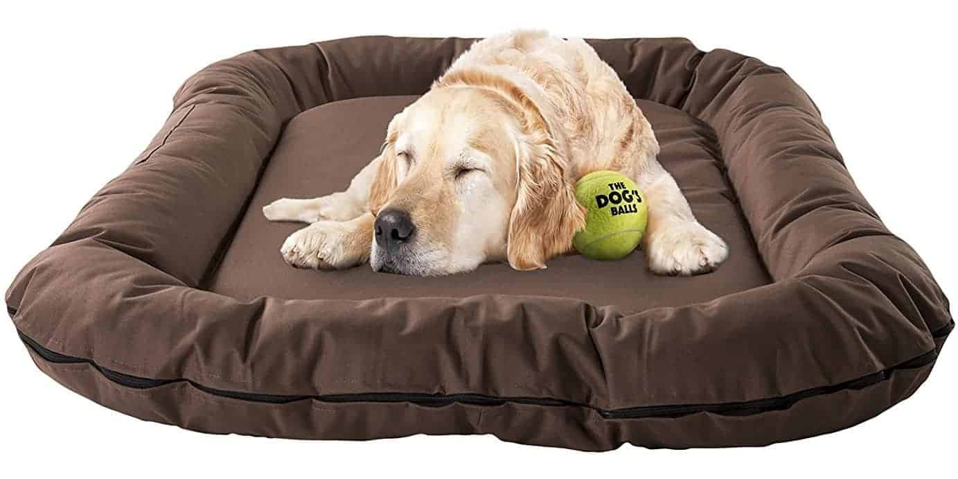 Best Waterproof Dog Bed – The Dog's Balls