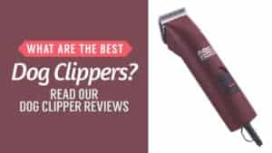 What Are the Best Dog Clippers? Read Our Dog Clipper Reviews