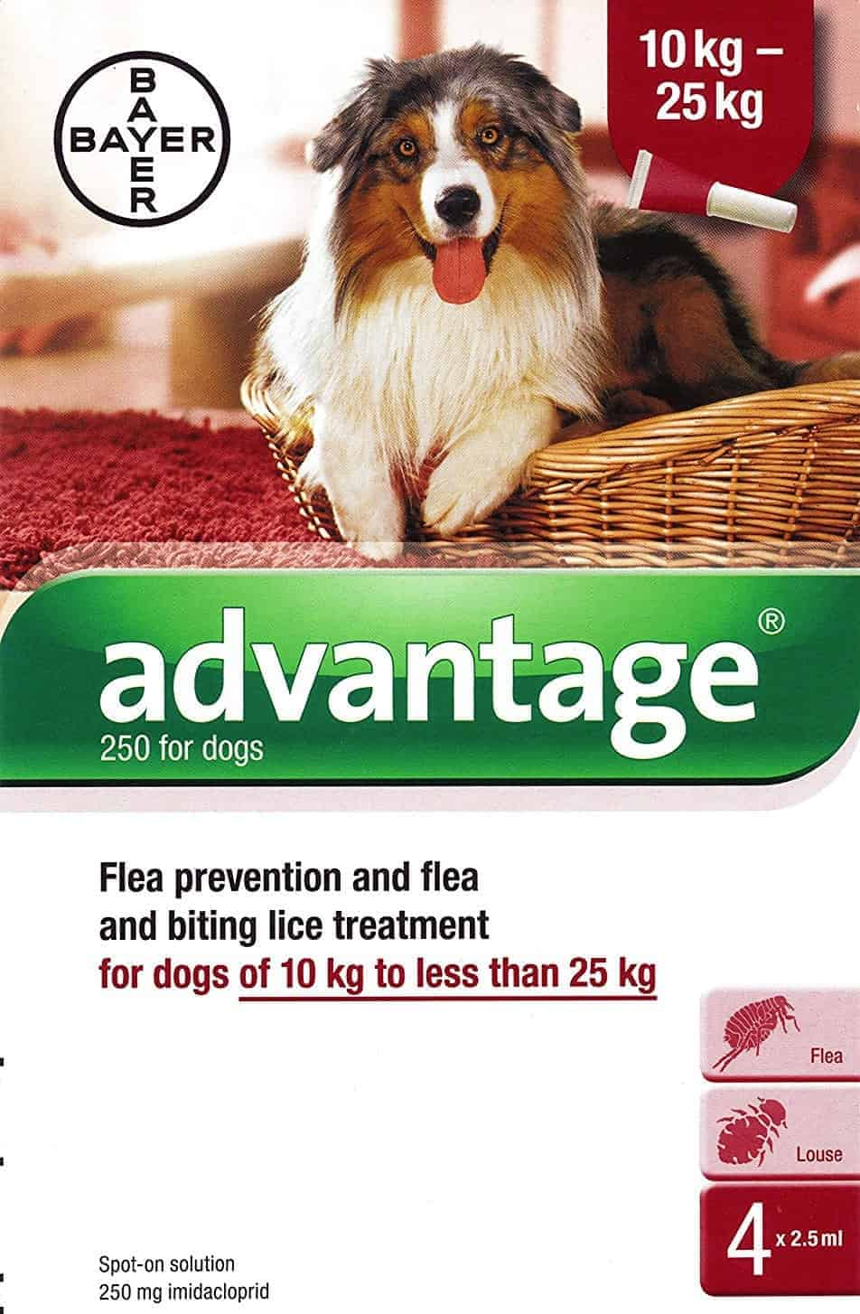 Bayer Advantage 250 For Dogs
