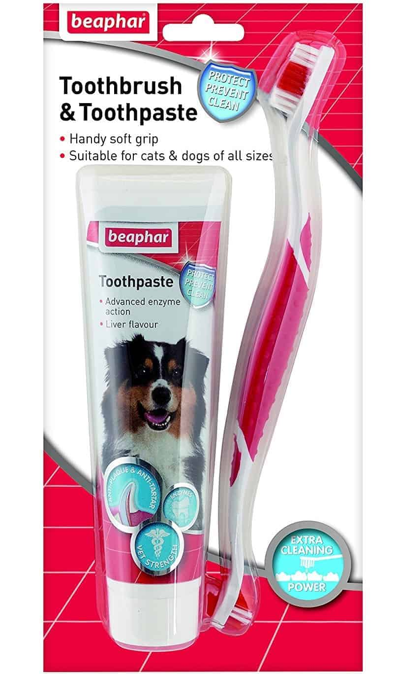 Beaphar Toothbrush and Toothpaste Kit