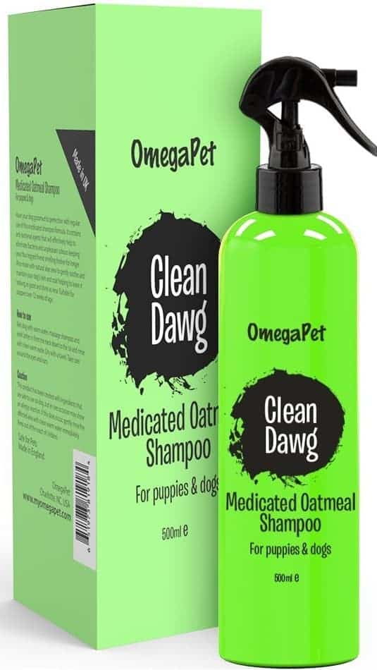 Best Medicated Dog Shampoo – Omega Pet