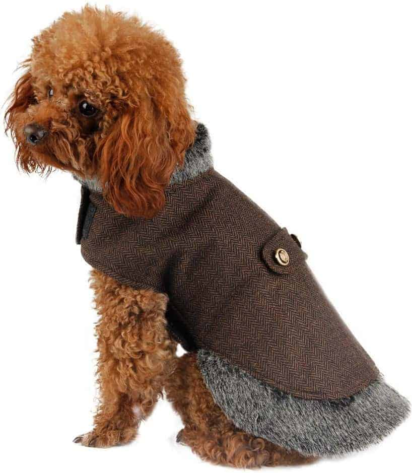 ultimate guide best dog coats read dog coat reviews uk. Black Bedroom Furniture Sets. Home Design Ideas
