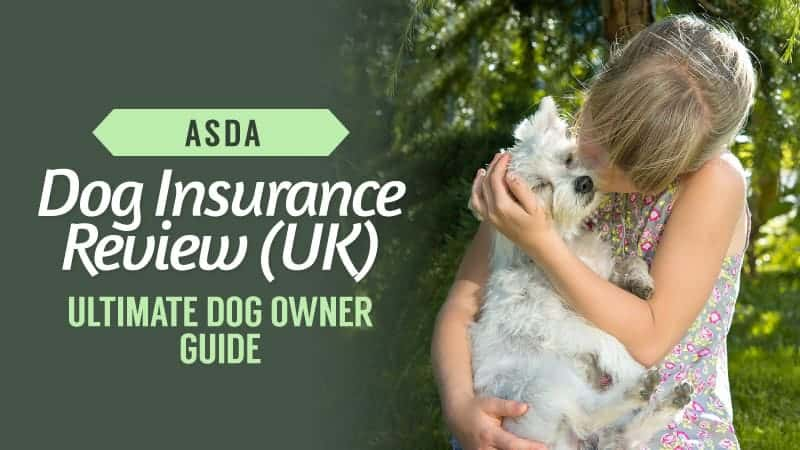 asda dog insurance review