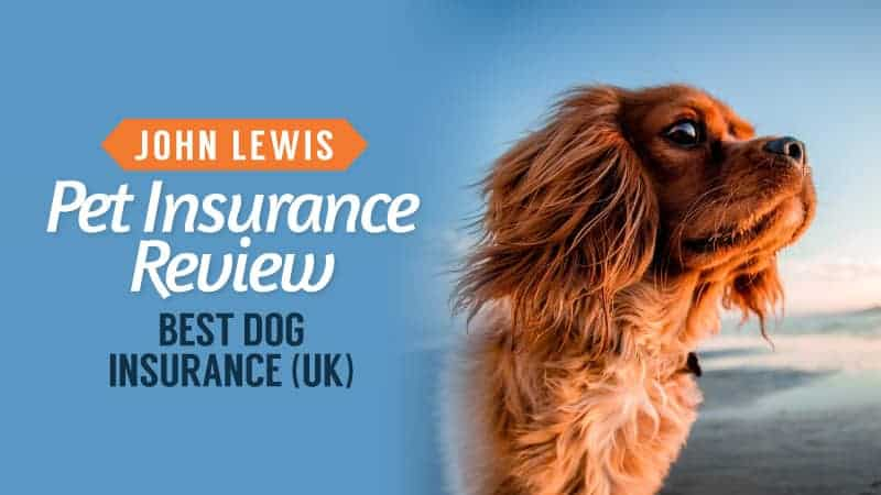 john lewis pet insurance review