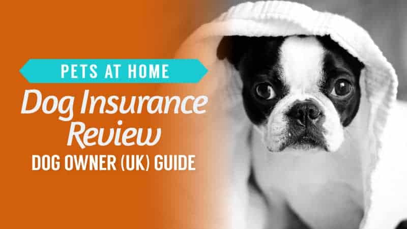 pets at home dog insurance review