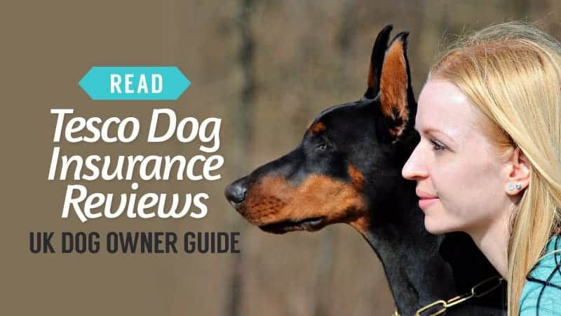 Tesco Dog Insurance Reviews