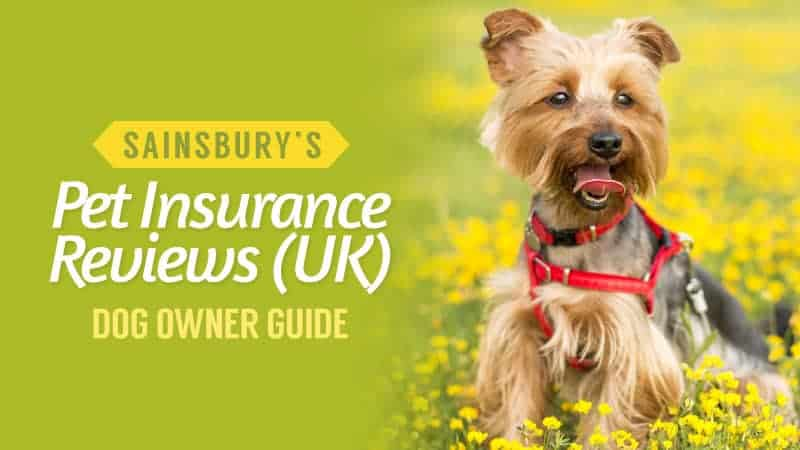 sainsburys pet insurance