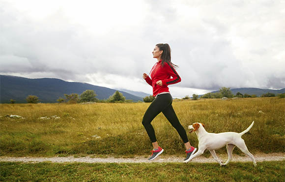 Five of The Most Active Canine Companions That Will Follow 0