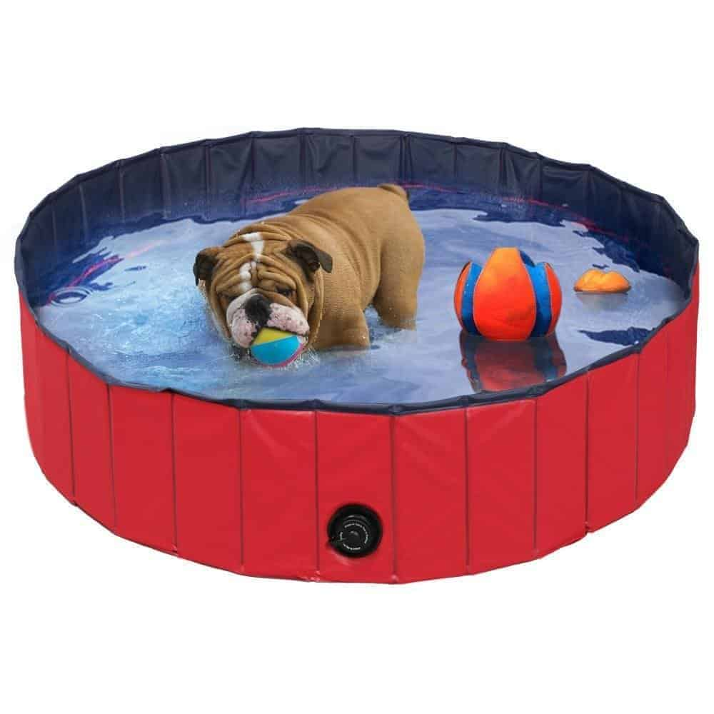 Best Dog Tub UK – Popamazing