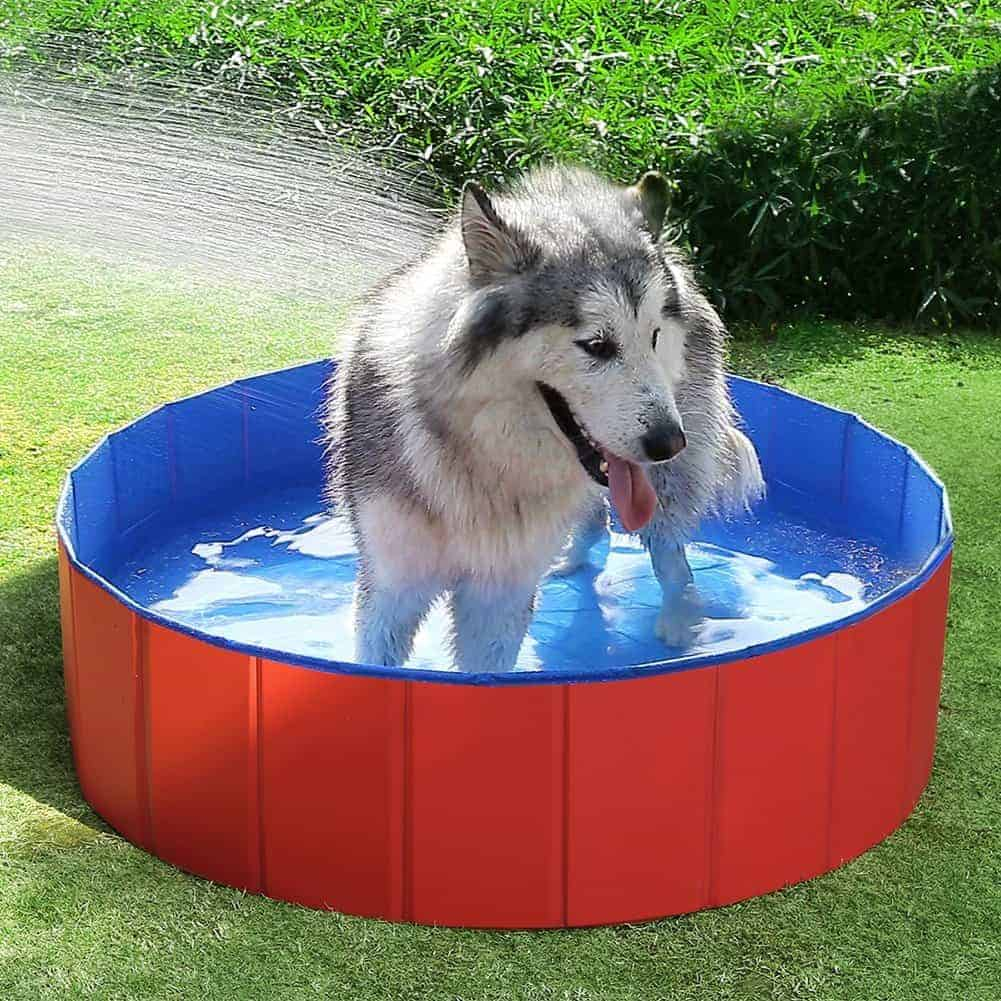 Fuloon Foldable Dog Paddling Pool