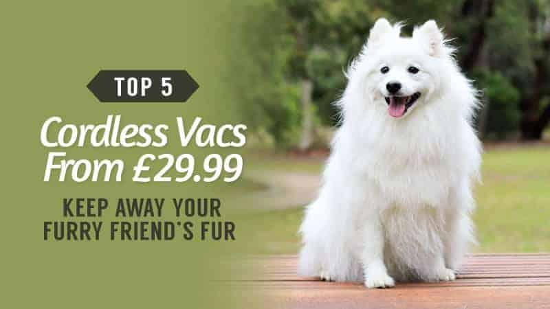Keep-Away-Your-Furry-Friends-Fur-Top-5-Cordless-Vacs-From-2999
