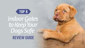 Top 5 Indoor Gates to Keep Your Dogs Safe – Review Guide