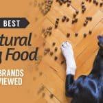 10-Best-Natural-Dog-Food-UK-Brands-Reviewed