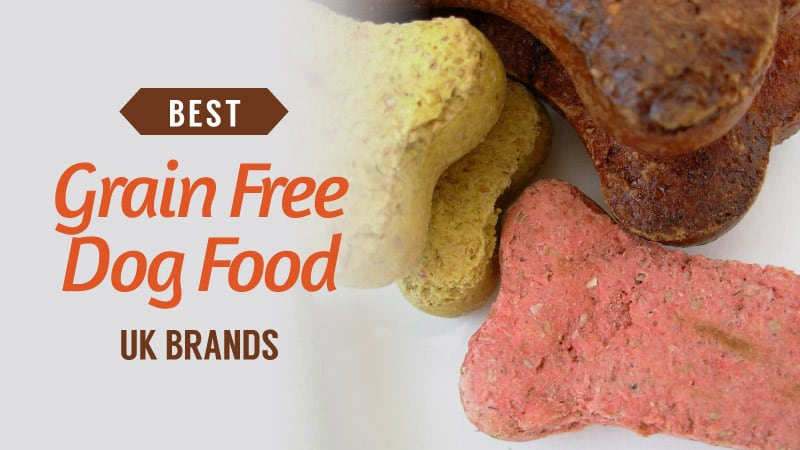 Best-Grain-Free-Dog-Food-UK-Brands