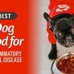 Best-Dog-Food-for-Inflammatory-Bowel-Disease