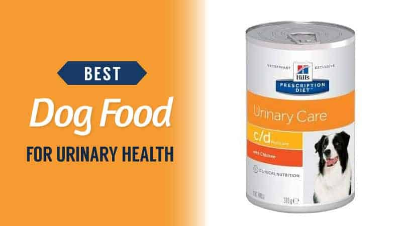 Best-Dog-Food-for-Urinary-Health