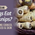 Can-Dogs-Eat-Parsnips