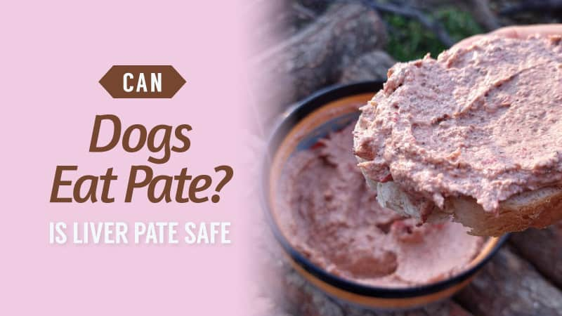 Can-Dogs-Eat-Pate-Is-Liver-Pate-Safe